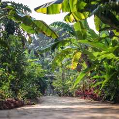 Retreats-Goa-03_61232fd2454e54d0988b8f7dd0d5fbe6